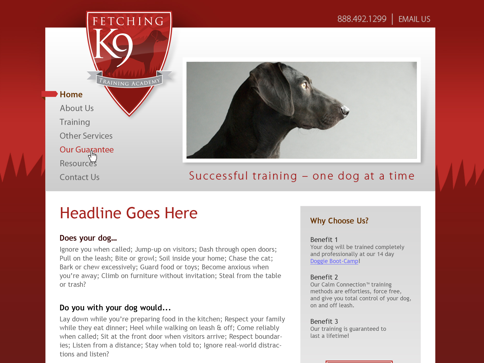 Fetching K9 Website